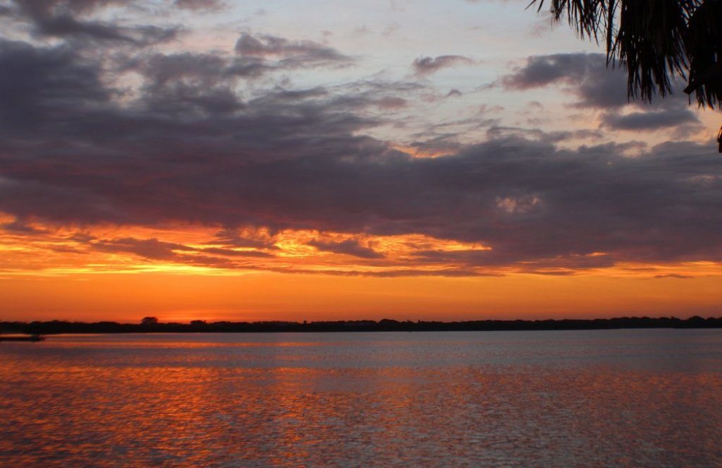 Grab your Coffee and Watch the Sunrise on the Bay or Gulf.