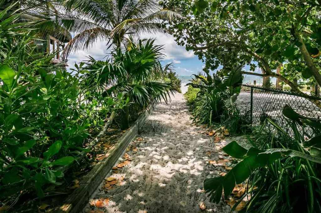 Beautiful Path to the Beach