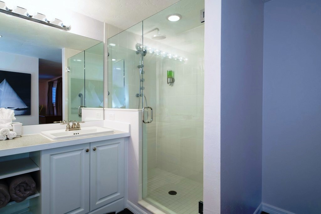Master Suite Shower With Walk-In Shower