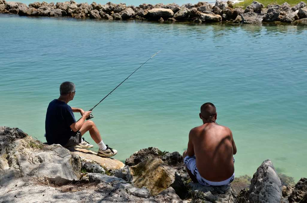 Fishing from the Bay in the Shade