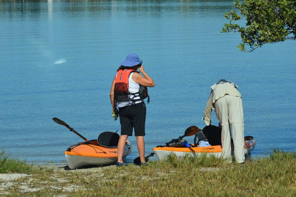 Drop In a Kayak and Scout the Mangroves
