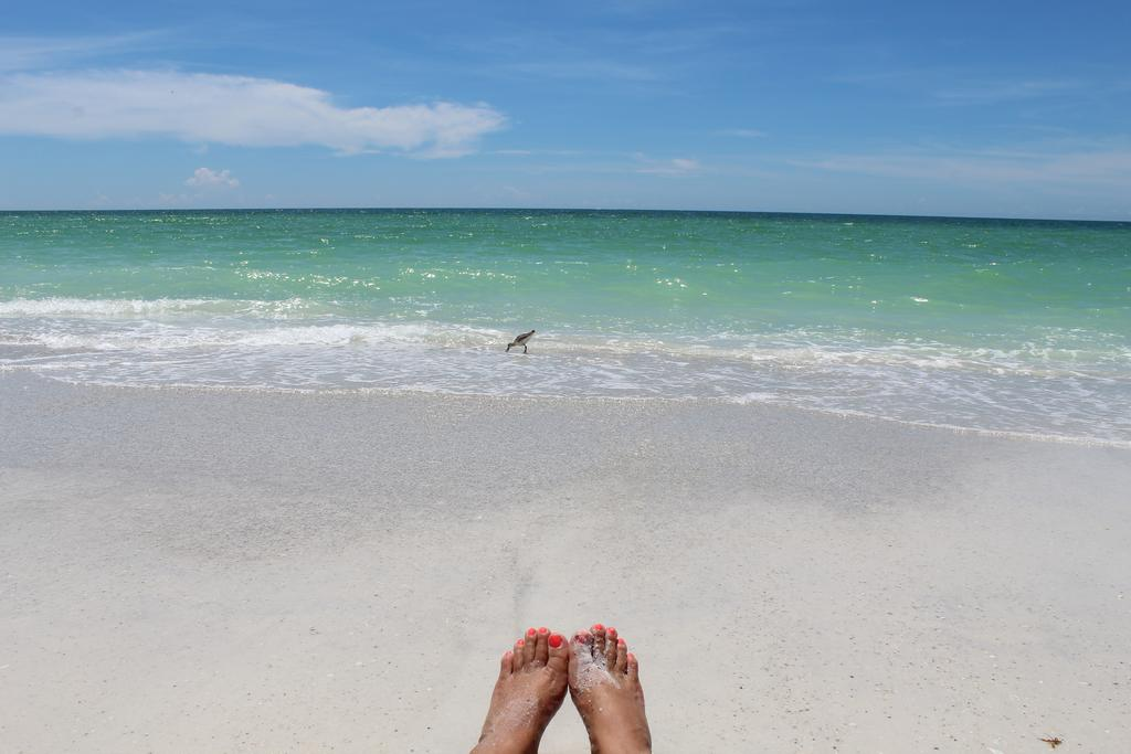 Clearwater Beach is Just a Short Drive